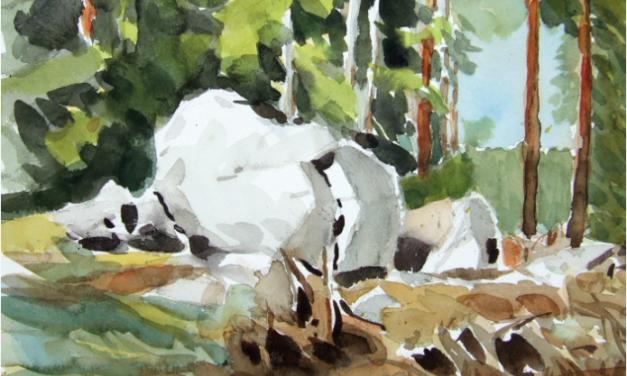Dekoratören som blev friluftskonstnär – Akvarellisten Berndt Larsson hämtar inspiration från småländsk skog och grekisk övärld