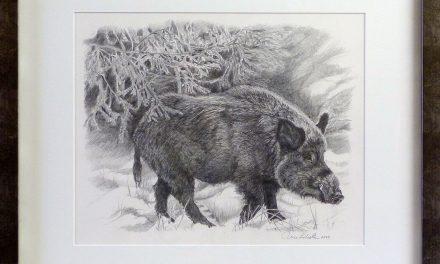 """Ulla Lodestens djur- och naturmotiv öppnade upp för ett viktigt konstnärsskap – """"Naturen är grundbulten i mig"""""""